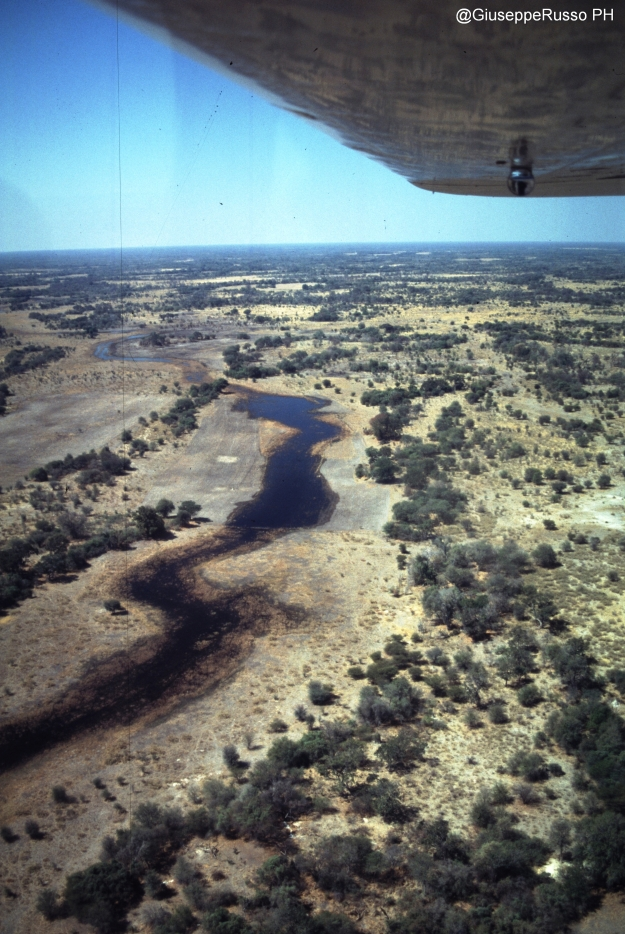 DELTA FLIGHT SULL'OKAWANGO